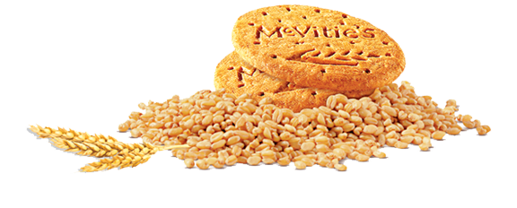 digestive biscuits équivalent